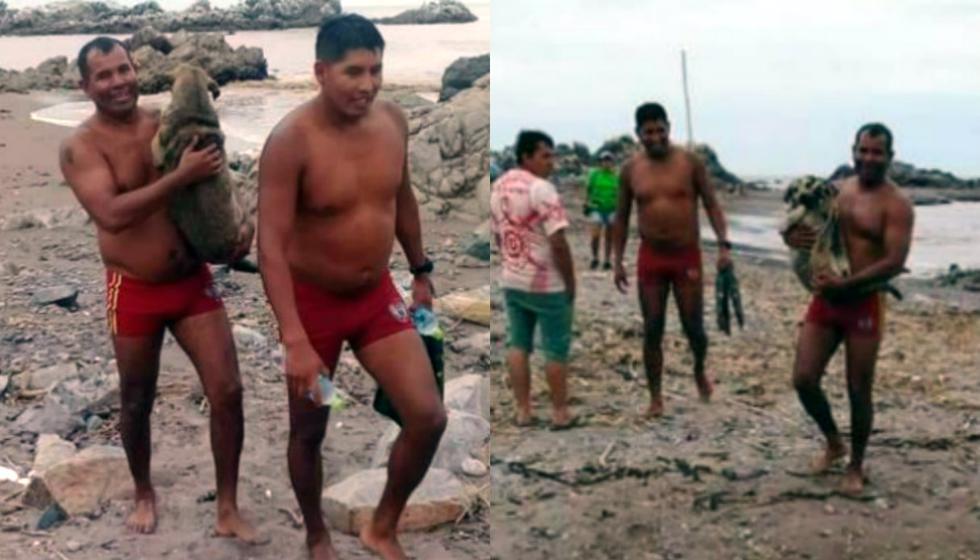 Policías de salvataje rescatan a una perrita preñada que era arrastrada por huaico en Moquegua. Foto: Facebook Radio RCC Tacna