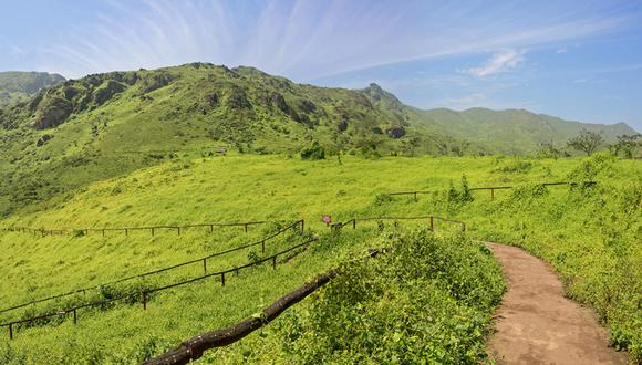 Piero Bazzetti, especialista en turismo, nos propone cuatro locaciones turísticas que podrás visitar con tu familia y a pocas horas de Lima. (Foto: El Comercio / Lomas de Lachay)