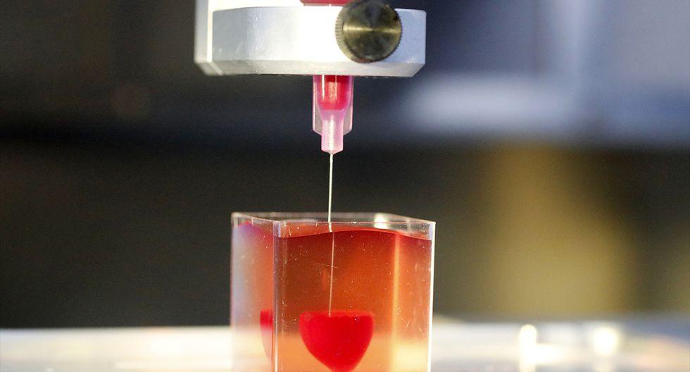 """Esta foto tomada el 15 de abril de 2019 en la Universidad de Tel Aviv muestra una impresión 3D de corazón con tejido humano. Los científicos en Israel dieron a conocer el lunes una impresión en 3D de un corazón con tejido y vasos humanos, y lo calificaron como el primer y un """"gran avance médico"""" que aumenta las posibilidades de trasplantes. (JACK GUEZ / AFP)"""