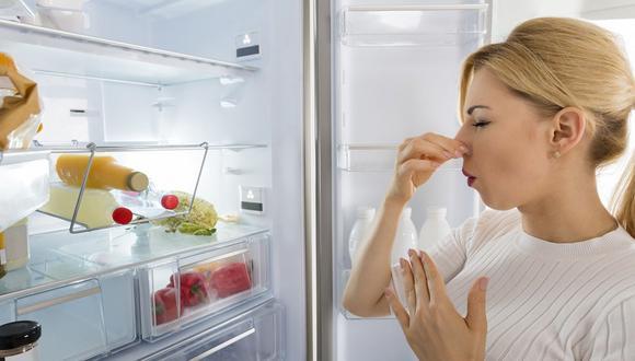 ¿Cómo eliminar el mal olor del refrigerador? (Foto: Pixabay)
