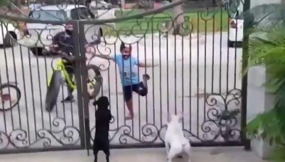 Un video viral tiene como protagonistas a un niño y dos perros que realizan una coreografía muy peculiar. | Crédito: @VineshKataria / Twitter.