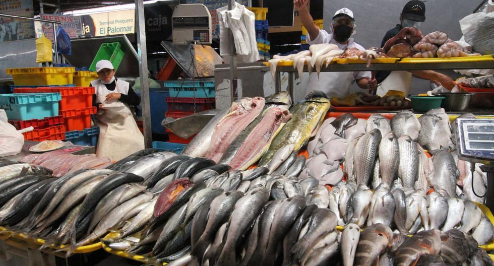 Precio del pescado 'por las nubes': Te compartimos algunas alternativas