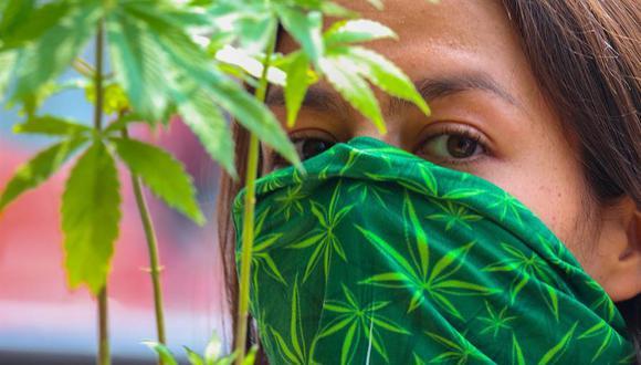 consumo de marihuana es peligroso para los adolescentes