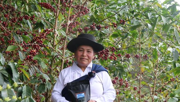 El café de Hilda Leguía, ganadora de Taza de Excelencia Perú de este año, superó los precios obtenidos por los mejores cafés del 2018 y 2019. (Foto: Taza excelencia 2020)