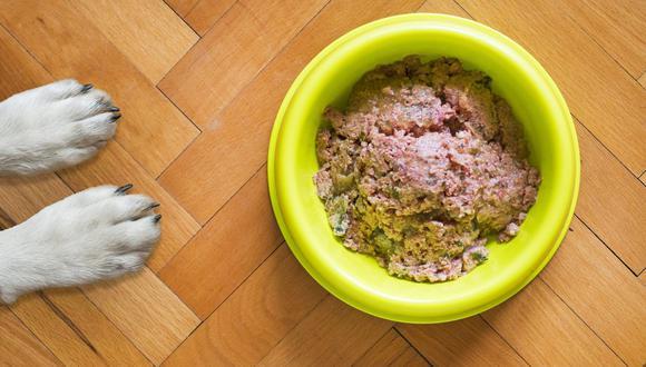 Prestar atención a la limpieza del espacio donde come es mantener a tu perro saludable. (Foto: Mat Coulton / Pixabay)