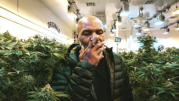 Mike Tyson abrió 'Tyson Ranch' en 2018 para la venta de marihuana legal en Estados Unidos
