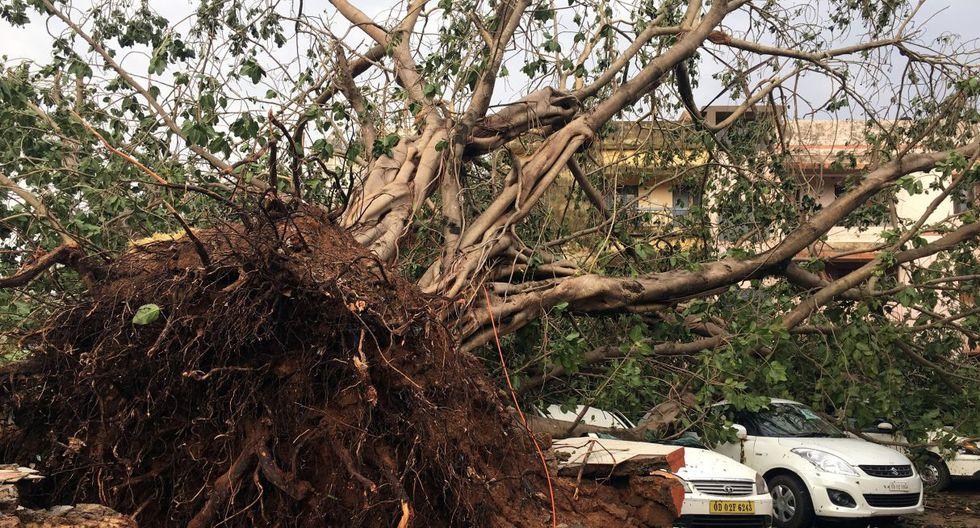 El Departamento Meteorológico de la India publicó el sábado en Twitter que Fani se debilitó hasta depresión a su paso por Bangladesh, y los vientos bajaron hasta los 70 km/h. (Foto: Reuters)