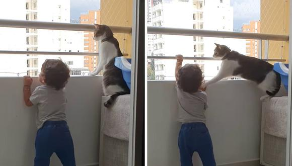 El gato salvó al niño de sufrir una caída potencialmente mortal. (Foto: ViralHog   YouTube)