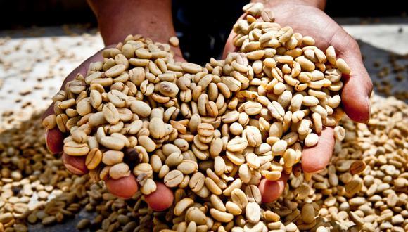 Nuestras alturas, sombras y microclimas dan escenario óptimo para obtener cafés de puntales altos. (PROMPERÚ)