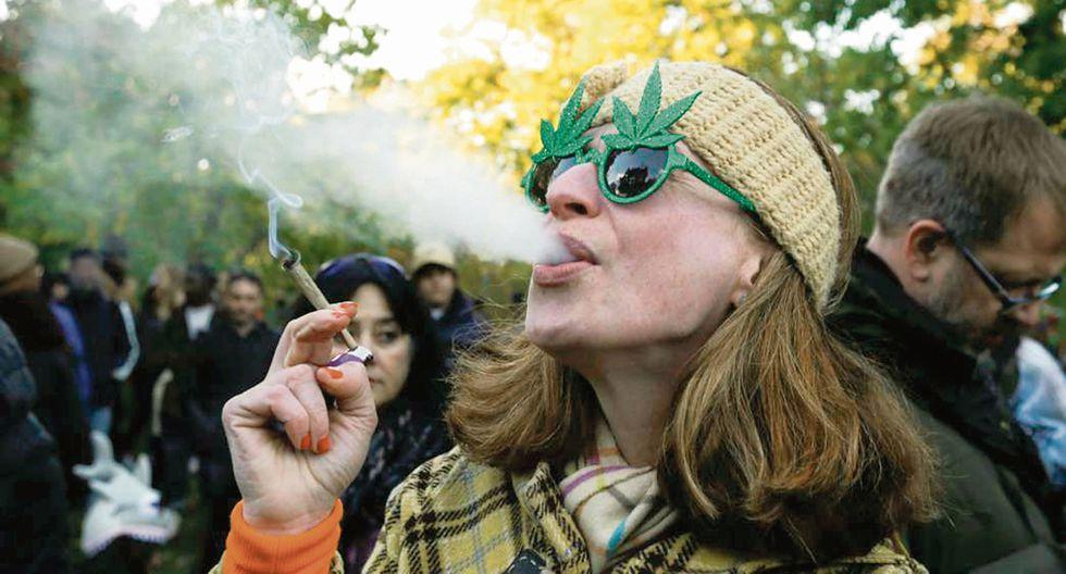 Especialista pide distinguir entre marihuana medicinal de recreativa.
