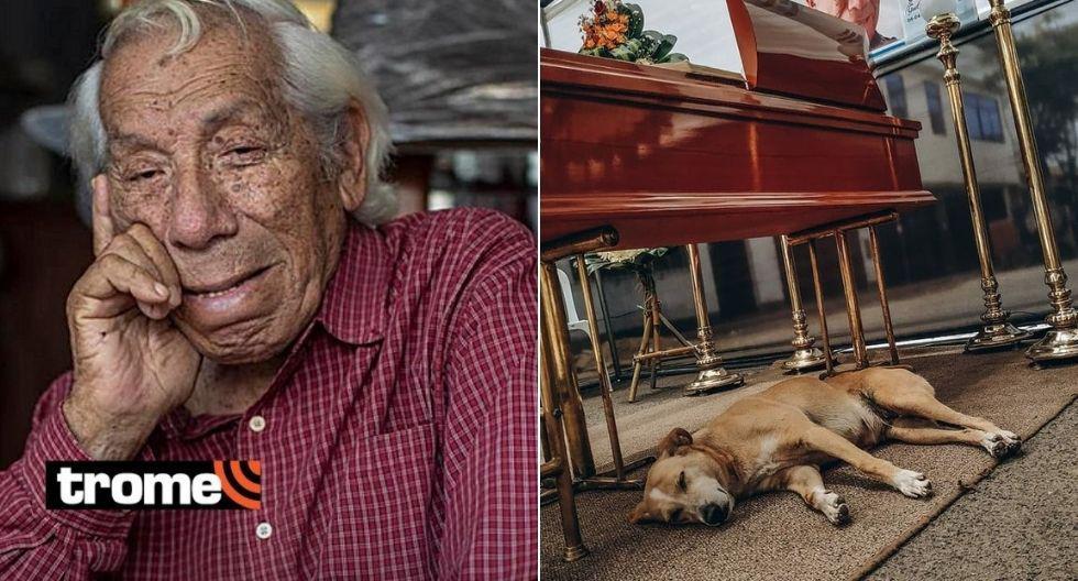 Valeria, la perrita fiel de Guillermo Campos que sigue a su lado a pesar de su muerte