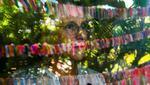 Cuando Cathy Tobias comenzó a amarrar una cinta de color a una cuerda por cada muerto de COVID-19 en Florida, no se imaginaba que acabaría llenando de coloridas guirnaldas el patio de su casa. (Foto: AFP)