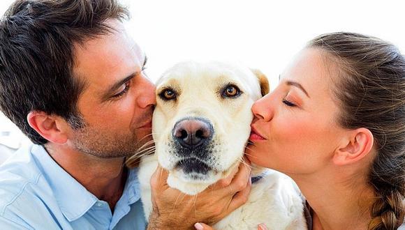 Estudio revela que tu amor por los perros podría ser genético