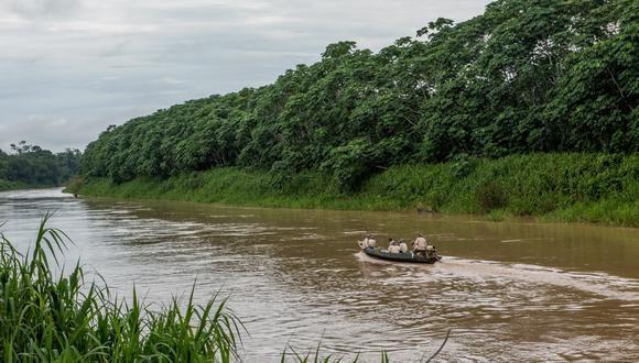Ucayali: Área de conservación regional permitirá protección de muchas especies de flora y fauna silvestres (Foto: Autoridad regional ambiental de Ucayali)