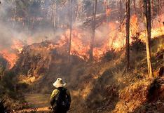Cusco: Tres muertos y 30 heridos sería el trágico saldo de un incendio forestal en Quispicanchi   VIDEO