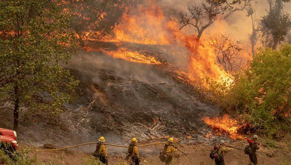 Al menos siete personas han muerto como resultado de los incendios de este año y unas 3.800 estructuras han sido dañadas o destruidas. (Foto: EFE/EPA/KYLE GRILLOT)