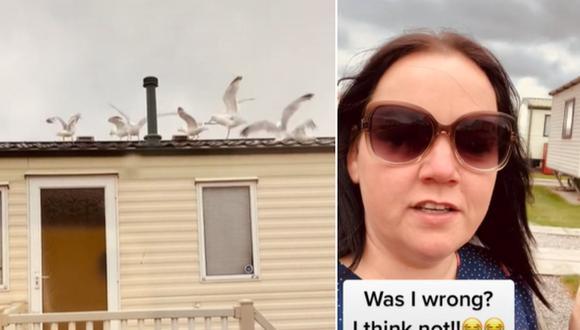 Madre de familia se venga de sus vecinos ruidosos cubriendo su techo con gaviotas. (Foto: @heatherminsh / TikTok)