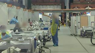 Investigadores británicos infectarán a voluntarios para avanzar en búsqueda de vacuna