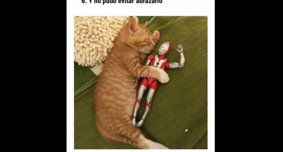 Aventuras del gatito japonpés y Ultraman