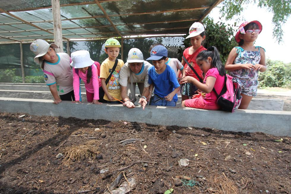 Arqueólogos de verano
