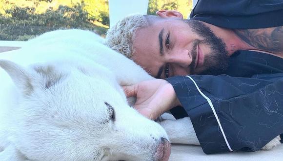 Maluma protagoniza tierno reencuentro con sus mascotas en Colombia. (Foto: @maluma)