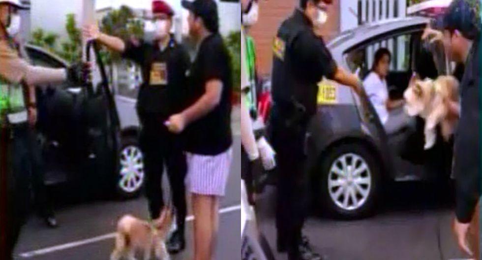 Sale a pasear a su mascota, lo detienen y su pareja se descontrola desde la ventana | TROME