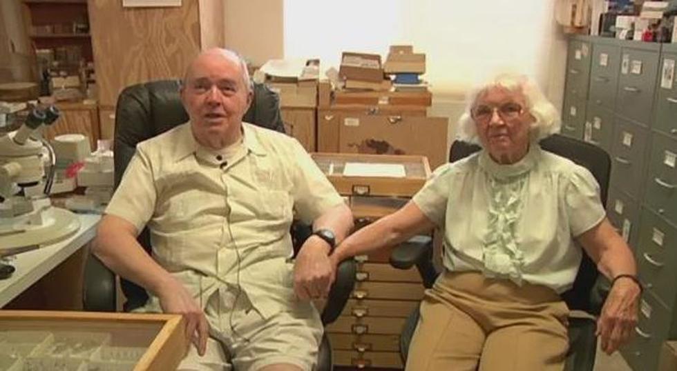 Charlie y Lois O'Brien pasaron 60 años coleccionando insectos. Pareja donó dos millones más para profesores de la universidad. ¡Conoce la historia!