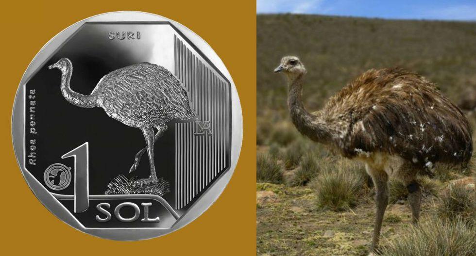 FOTO 7 | Por su parte, la séptima moneda de sol tuvo inscrita al suri. (Fuente: BCR)