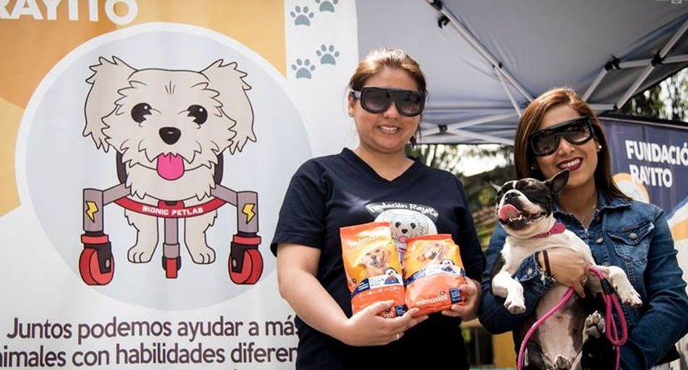 Este evento benéfico se realizará este 18 de noviembre en el parque de las mascotas del Campo de Marte, ubicado en Jesús María (Fotos: Facebook Fundación Rayito/ Producciones Vida)