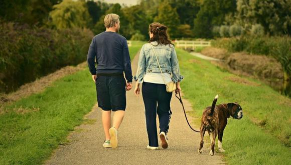 Lo mejor es que esta actividad puede ser realizada tanto por un joven, adulto o anciano. (Foto: Pixabay)