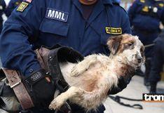 Policías que vigilan estado de emergencia rescatan a perrito que cayó al Río Rímac | FOTOS